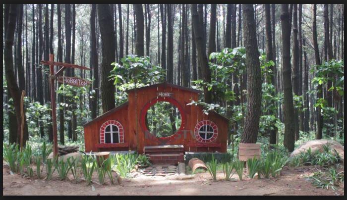 rumah-hobbit-jogja