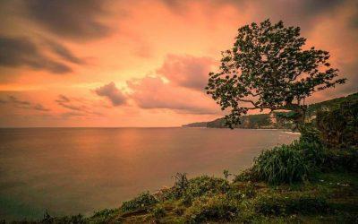 Pantai Kesirat malah memiliki pesonanya tersendiri melalui panorama senja yang begitu luar biasa.